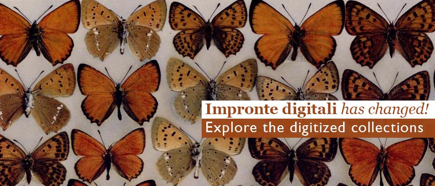 Impronte digitali has changed!Explore the digitized collections of the University Library System