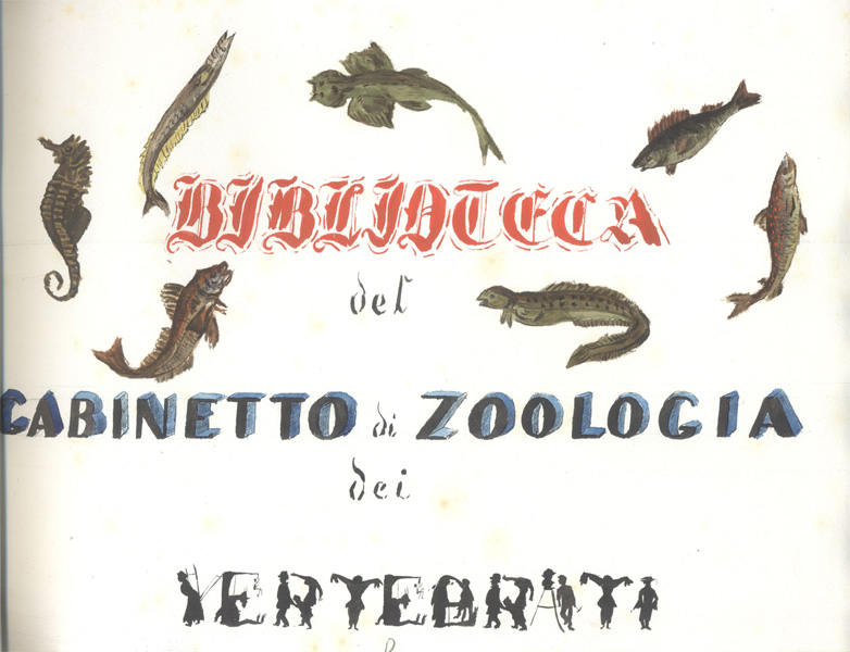 Fondo antico Biologia animale - catalogo a volume